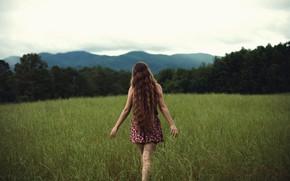 Picture field, grass, girl, Free, curls, NoelleBuske