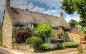 Picture comfort, house, England, HDR, design, houses, shrubs, England, Yetminster