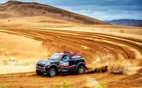 Picture Sand, Mini, Sport, Desert, Speed, Race, Rally, SUV, Rally, 101, Dune, X-Raid Team, MINI Cooper, …