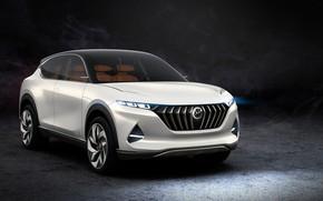 Picture Hybrid, 2018, crossover, Pininfarina, Kinetic, K350