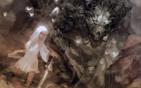 Picture wolf, Keunju Kim, rabbit eyes, and dire, snow elf