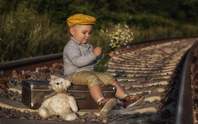 Picture flowers, toy, rails, chamomile, boy, railroad, bear, cap, suitcase, Teddy bear
