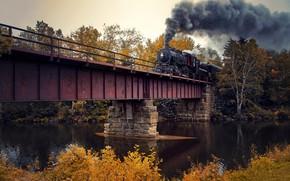 Picture autumn, bridge, train