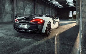 Wallpaper lights, McLaren, rear view, 2018, Spider, Novitec, 570S