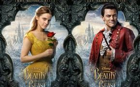 Picture cinema, rose, Disney, Emma Watson, movie, Walt Disney, film, Beauty and the Beast, Luke Evans