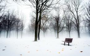 Picture snow, fog, Park, bench