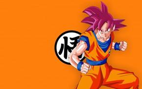 Picture alien, anime, man, orange, martial artist, manga, Son Goku, kimono, Dragon Ball, Goku, Dragon Ball …