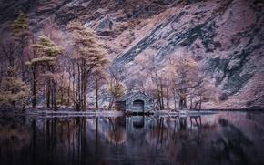 Picture nature, lake, color