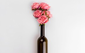 Picture flowers, bottle, roses, bouquet, pink, pink, flowers, roses, bottle, tender