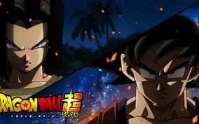 Picture DBS, fire, flame, game, android, alien, anime, island, martial artist, manga, Son Goku, Dragon Ball, ...