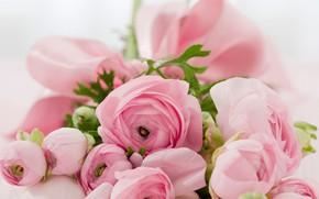 Wallpaper flowers, bouquet, Ranunculus
