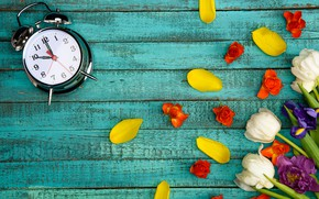 Picture flowers, background, petals, alarm clock