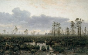 Picture oil, Canvas, f, cloudy sky, Vladimir MENK, Morning in the swamp