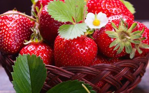 Picture strawberry, berry, basket, delicious, juicy
