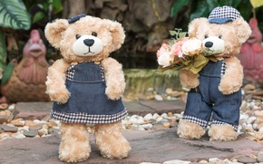 Picture love, flowers, toy, roses, bouquet, bear, pair, love, two, beach, bear, romantic, teddy