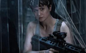 Wallpaper Alien: Covenant, film, Prometheus, weapon, rifle, movie, gun, alien, cinema, Katherine Waterston, Alien: Paradise Lost