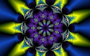 Picture flower, pattern, fractal, symmetry
