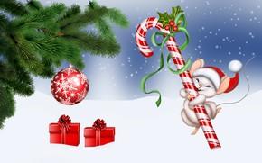 Picture zima, Christmas, Lizak, myszka
