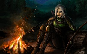 Picture forest, ass, look, girl, trees, night, feet, elf, bow, the fire, art, arrows