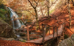 Picture autumn, trees, bridge, waterfall