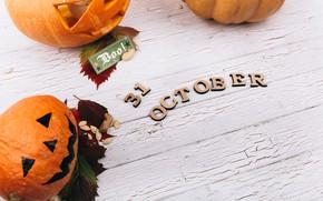 Picture Pumpkin, Halloween, Holiday