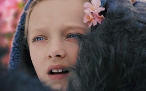Picture cinema, girl, monkey, flower, Nova, movie, film, kid, hana, War For The Planet Of The …