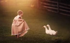 Picture dress, girl, geese