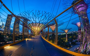 Picture bridge, design, the city, lights, Park, home, the evening, Singapore, Gardens by the Bay