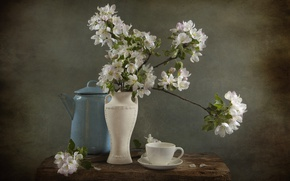 Picture kettle, Cup, vase, still life, Apple