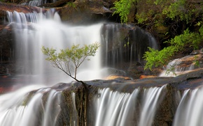 Picture waterfall, Australia, New South Wales, Blue mountains, Wentworth