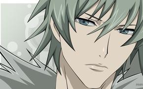 Picture portrait, anime, art, guy, Togainu no Chi, Akira
