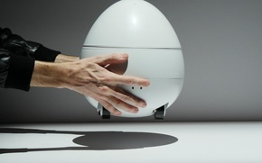 Picture robot, man, home, hand, technology, projector, CES 2017, robot egg, Panasonic Companion