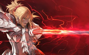 Picture girl, sword, the saber, fate/grand order