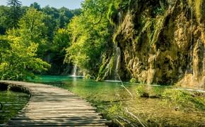 Picture greens, lake, track, Croatia, Plitvice lakes