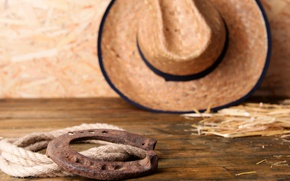Picture hat, Leather, horseshoe