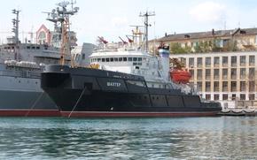 Picture tug, sea, lifeguard, Miner, Sevastopol