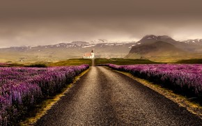 Picture road, mountains, clouds, field, Iceland