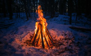 Picture winter, forest, snow, loneliness, heat, the fire, Ural, the fire, the village of Iset