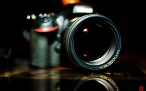 Picture Nikon, Camera, Macro, Lens, DSLR