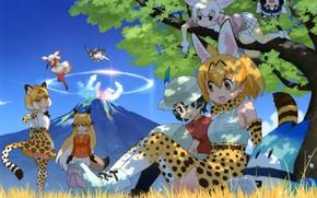 Picture kawaii, girl, anime, pretty, asian, cute, giant, manga, japanese, oriental, asiatic, vegetation, bishojo, moe, Kemono …