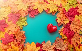 Wallpaper autumn, leaves, love, heart, red, love, heart, autumn, leaves, romantic, valentine, maple