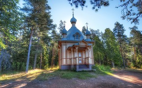 Picture forest, the sun, trees, temple, Russia, Valaam Island