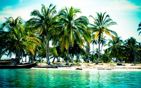 Picture beach, tropics, palm trees, the ocean, boats, exotic