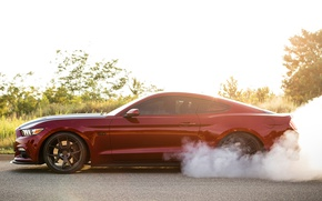 Picture Mustang, Ford, Speed, Smoke, Muscle car, Road