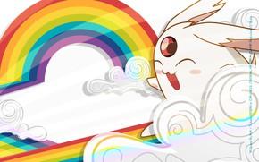 Picture white, rainbow, anime, art, animal, xxxHolic
