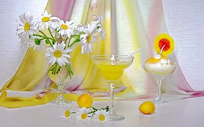 Picture summer, flowers, chamomile, bouquet, juice, ice cream, still life, drinks, dessert, apricots, bouquets, the competition