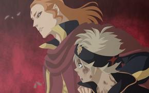 Picture anime, Lion, manga, to narutorenegado01, mahou, japonese, madoshi, Asta, Black clover
