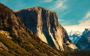 Picture forest, trees, mountains, rocks, CA, gorge, USA, Yosemite, Yosemite National Park