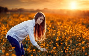 Picture field, girl, sunset, mood, rape, Alessandro Di Cicco, Luiz Carlos Sene