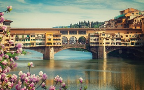 Wallpaper spring, Old Bridge, view, Italy, bridge, Italy, travel, flowering, Europe, panorama, Florence, the city, city, ...